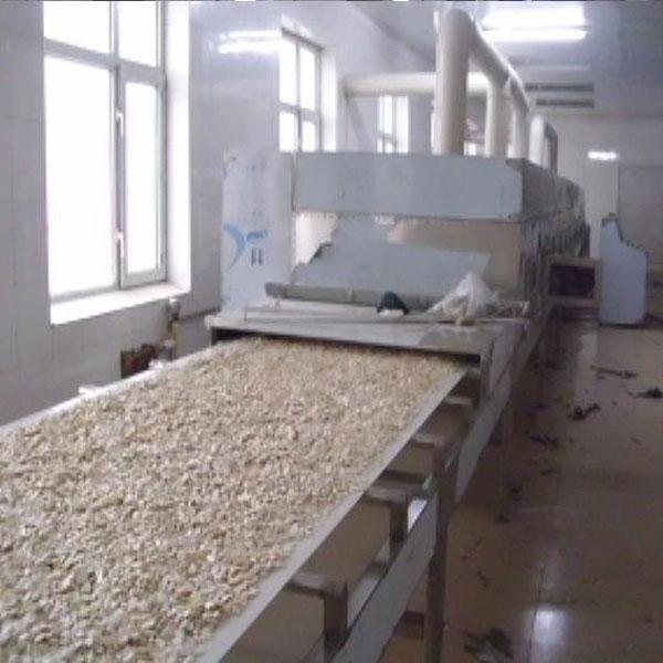 新余专业大米烘干厂