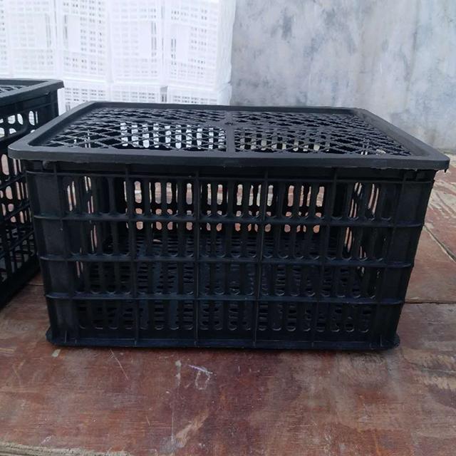 四十斤黑筐